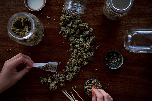 cannabis from mexico being rolled on wooden table womens hands