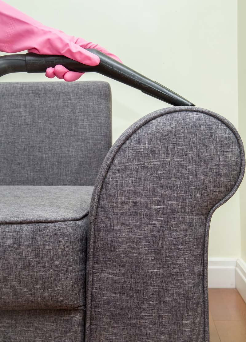 Professional Upholstery Cleaning in Metro Detroit, MI