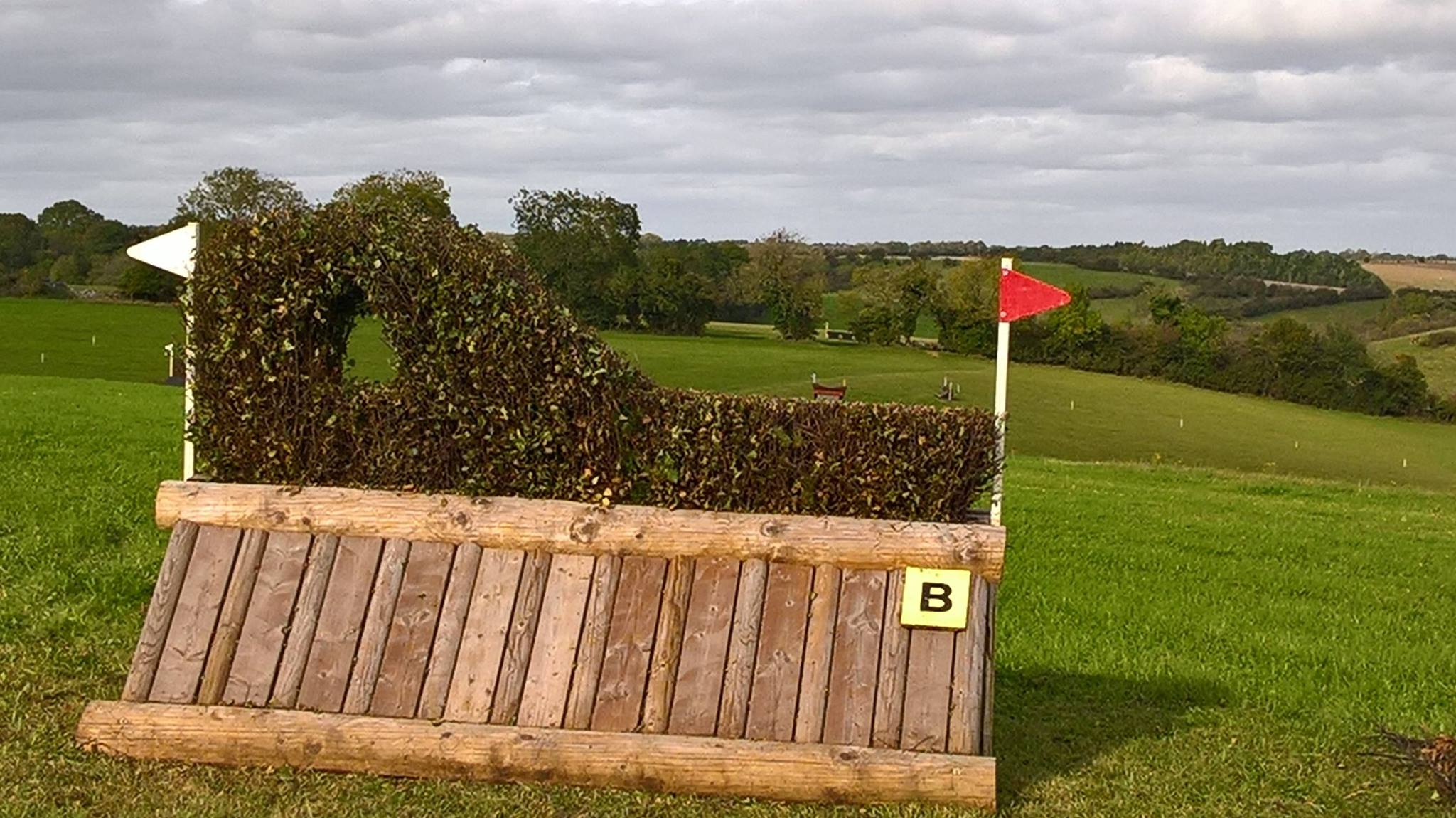 Calmsden Events Novice