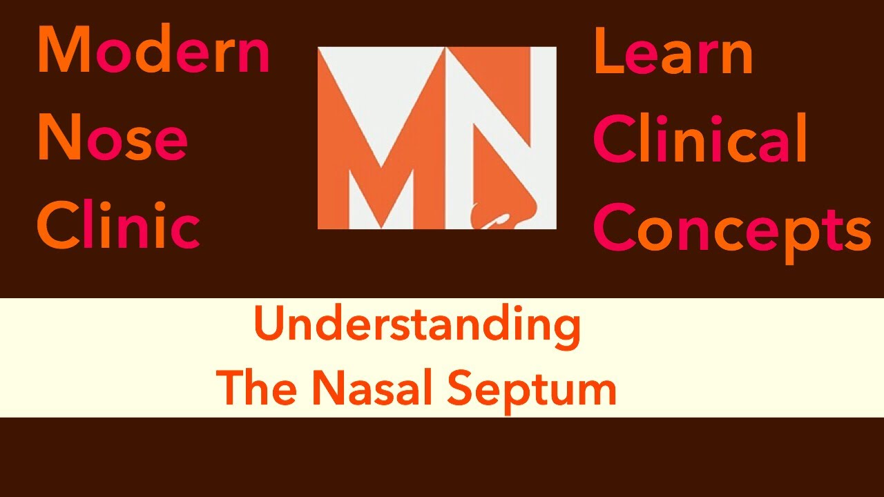 Understanding The Nasal Septum