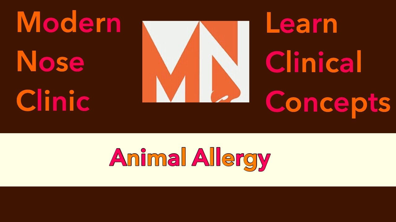 Animal Allergy