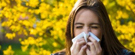 Oregon Allergies