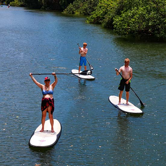 Stand Up Paddle Board SUP - Hi5 Hawaii Circle Island Adventure Tour