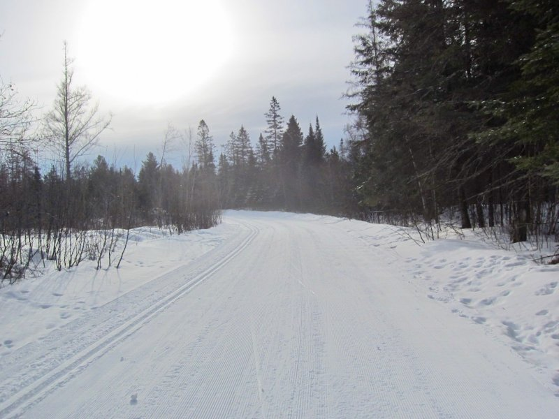 Freshly groomed cross country ski trail on Blue Hills Trail Core Loop