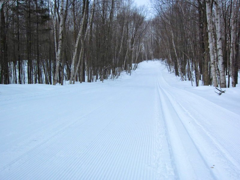 beautifully groomed cross country ski trail on the West Side of the Blue Hills Trail