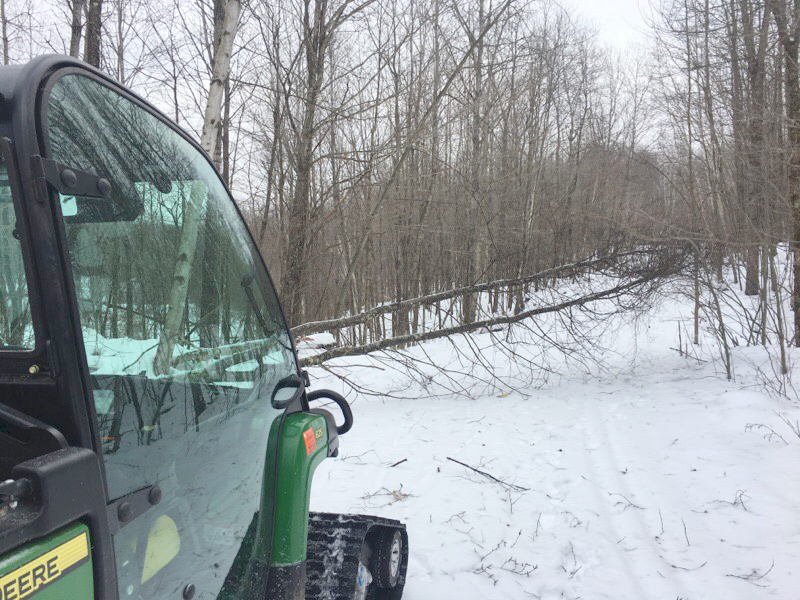 early December 2016 grooming challenges at the Blue Hills Trail