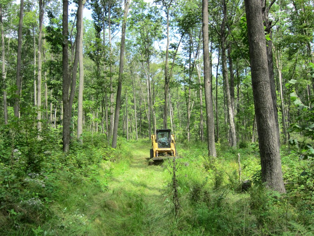 trail mowing summer 2012