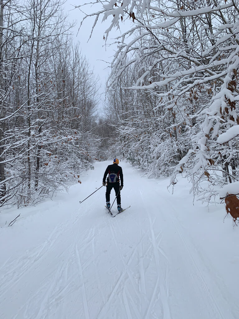 cross country skiing January 2020 on the Blue Hills Trail