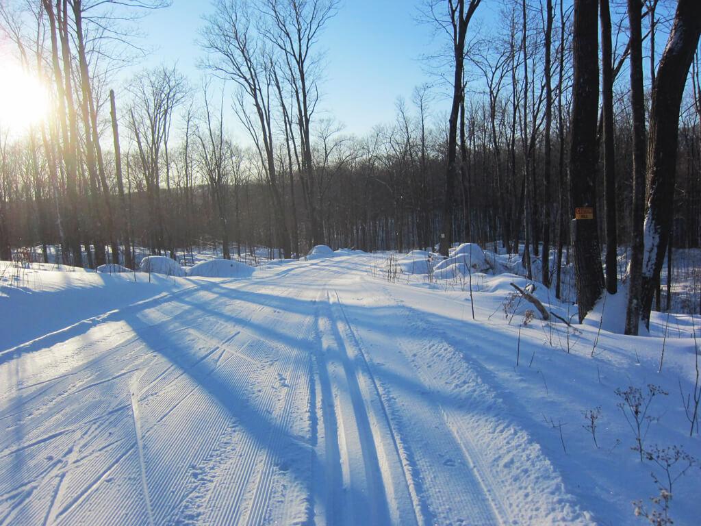 Blue Hills Trail cross country ski trail