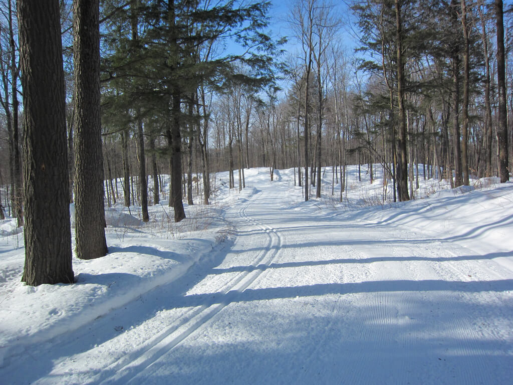 beautifully groomed trail on the Blue Hills Trail ridge line