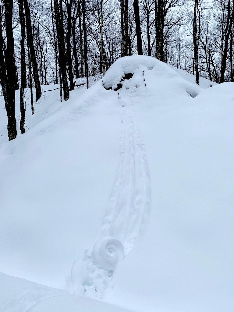 photo of snow roller adjacent to the ski trail