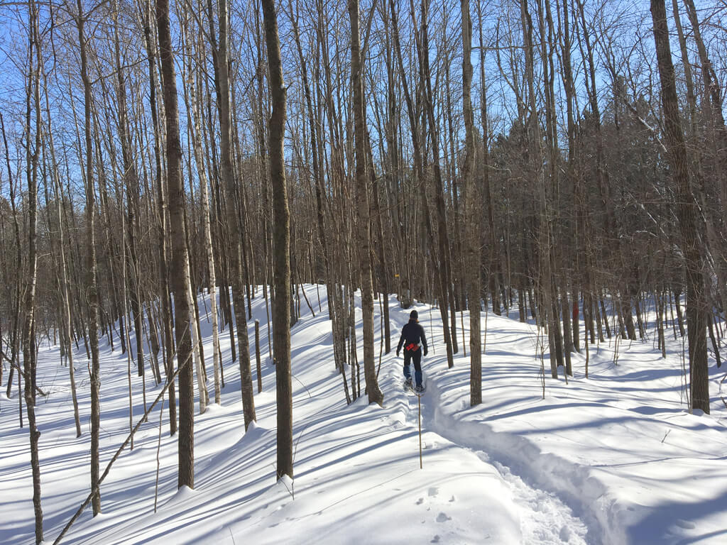 snowshoeing on the 'Ridges' trail at the Blue Hills Trail in northern Wisconsin