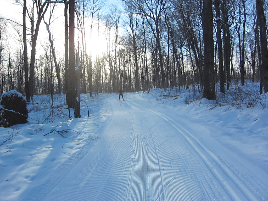 excellent cross country skiing at the Blue Hills Trail January 19, 2016