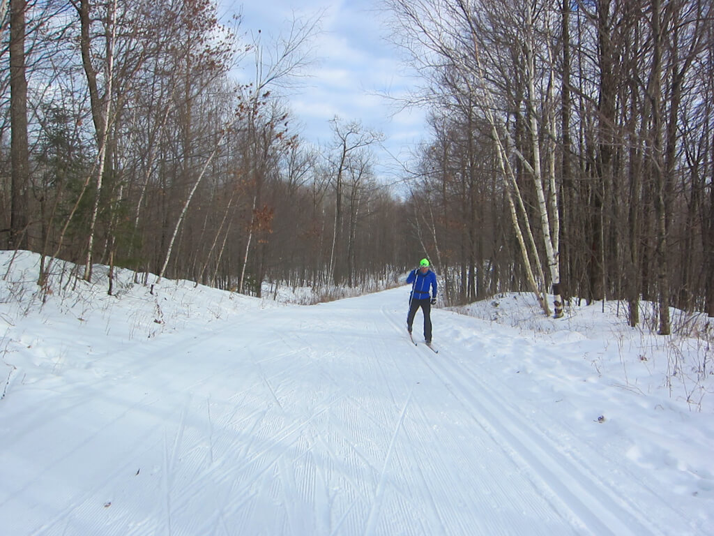 excellent cross country skiing at the Blue Hills Trail January 29, 2016