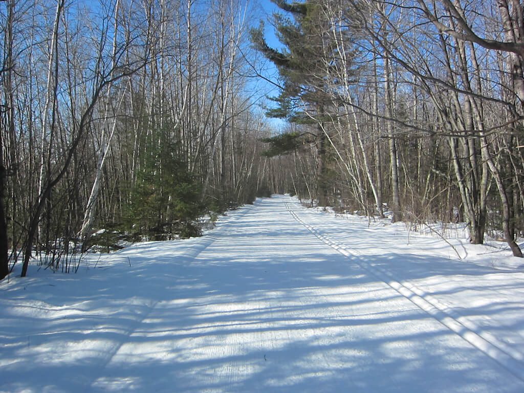 late winter cross country skiing at the Blue Hills Trail