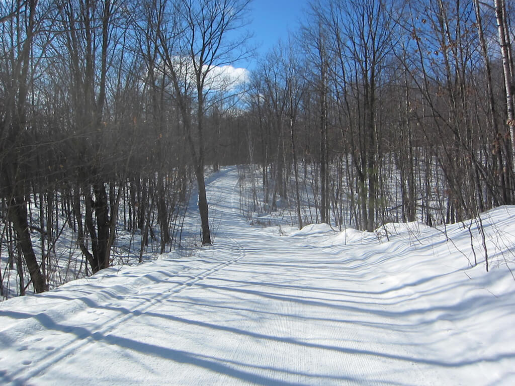 great conditions for cross country skiing February 22, 2016