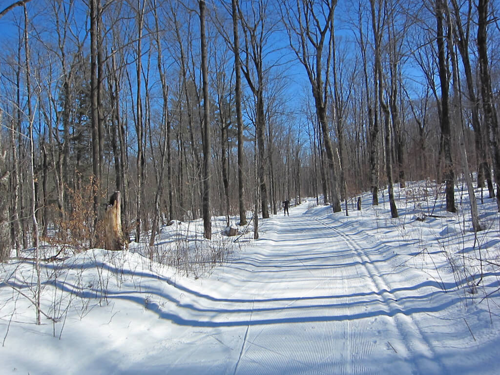 Late February 2016 cross country skiing on the East Side of the Blue Hills Trail