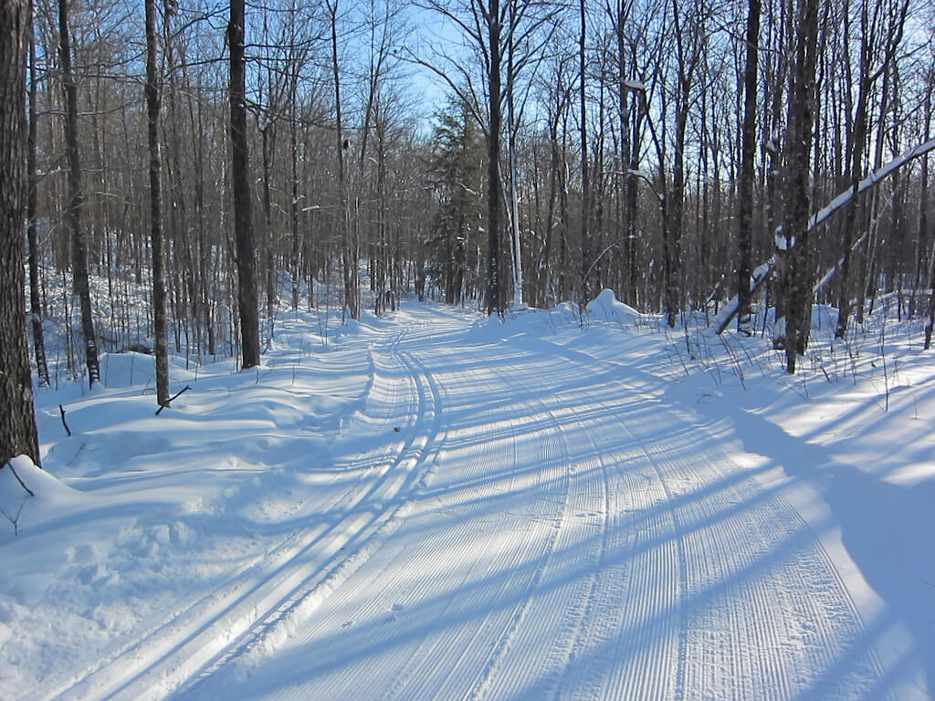 early January 2015 cross country ski trail at Blue Hills Trail