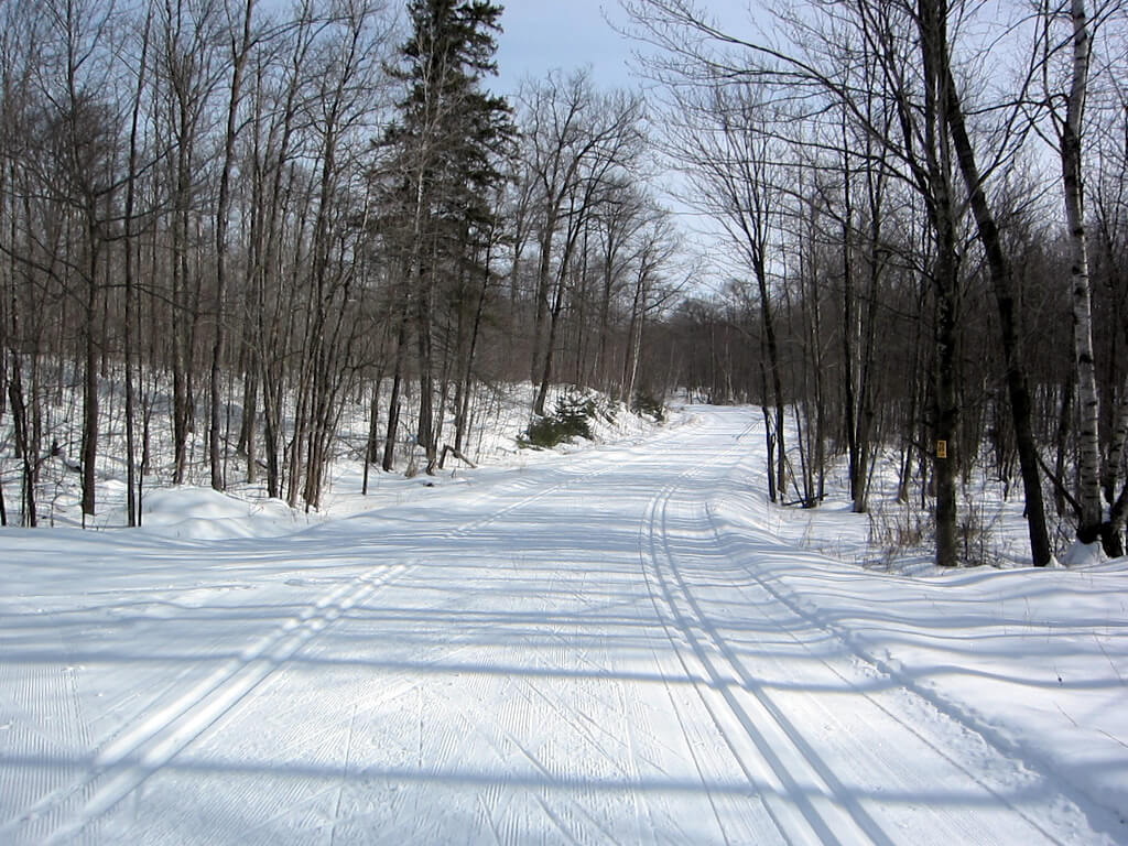 great grooming on 'Gravel Road' at the Blue Hills Trail