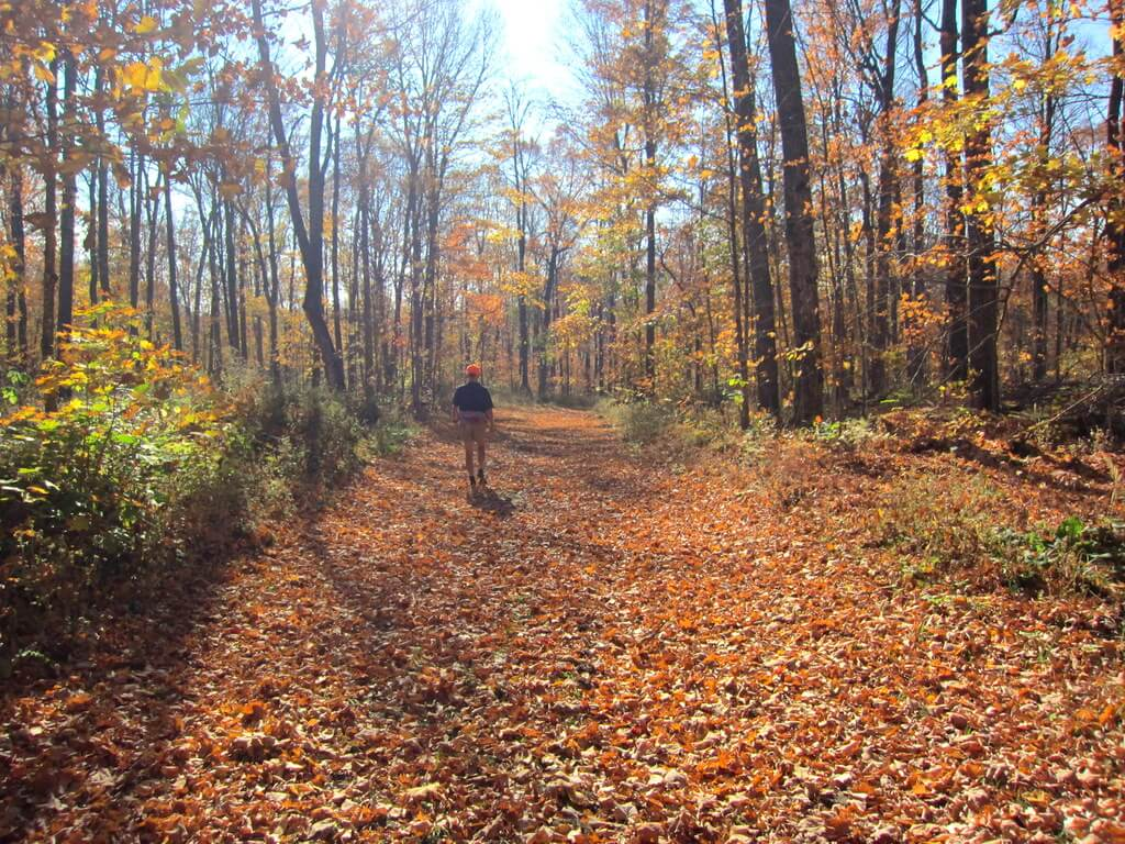 fall hiking at the Blue Hills Trail in Wisconsin