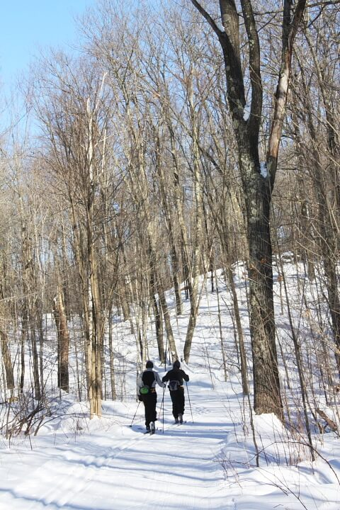 two classic skiers at the Blue Hills Trail in February 2011