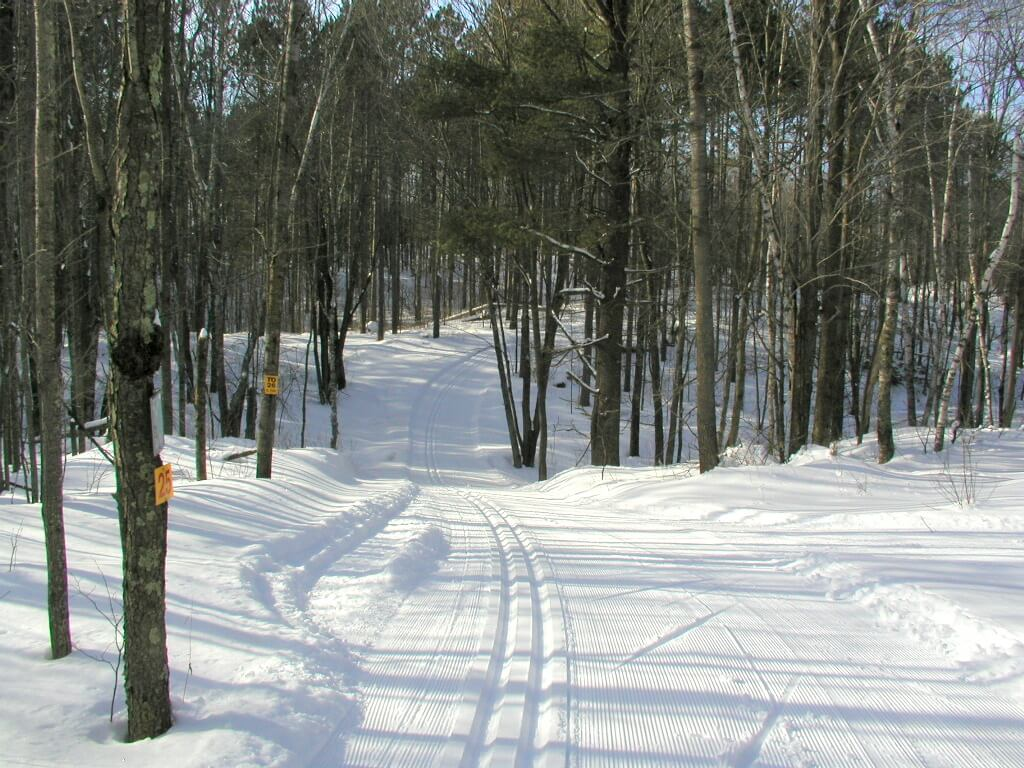 ski trail connecting East Side and West Side of the Blue Hills Trail