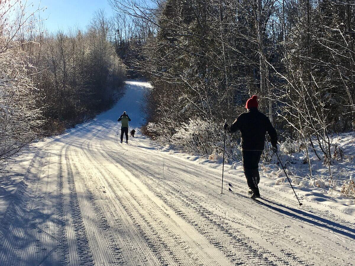 Skiing with your dog on Excelsior Road on Christmas Day