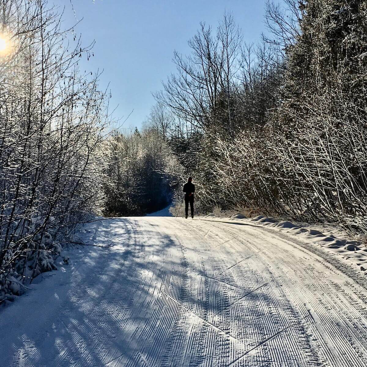 Pausing to reflect while cross country skiing on Excelsior Road on Christmas Day