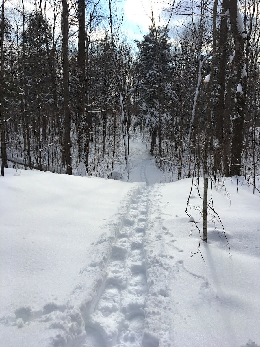 Snowshoeing at Blue Hills Trail during February 2019 'snowmageddon'