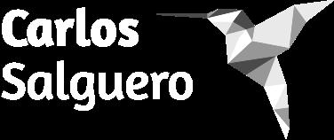 Carlos Salguero's Logo as a Hummingbird