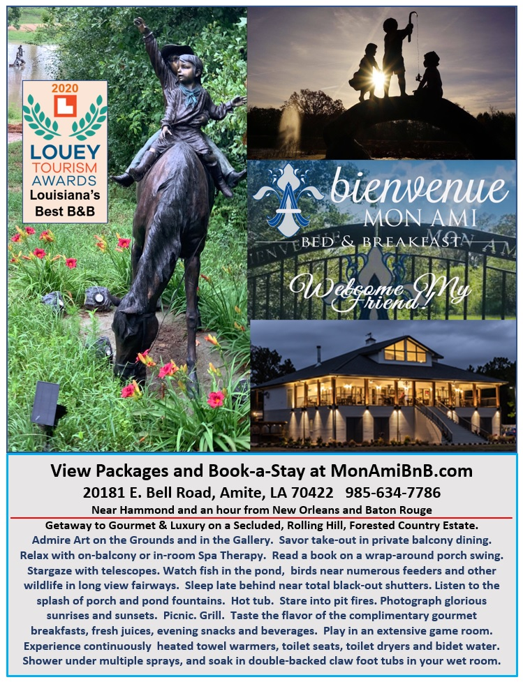 What to do At The Private Club Style Estate Of Bienvenue Mon Ami