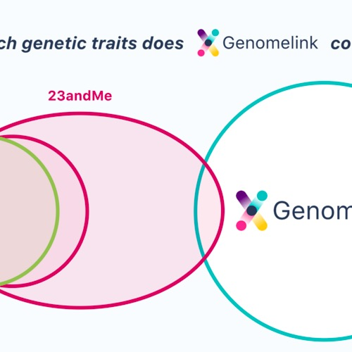 Which genetic traits are offered on each genetic testing service and raw DNA data upload sites?