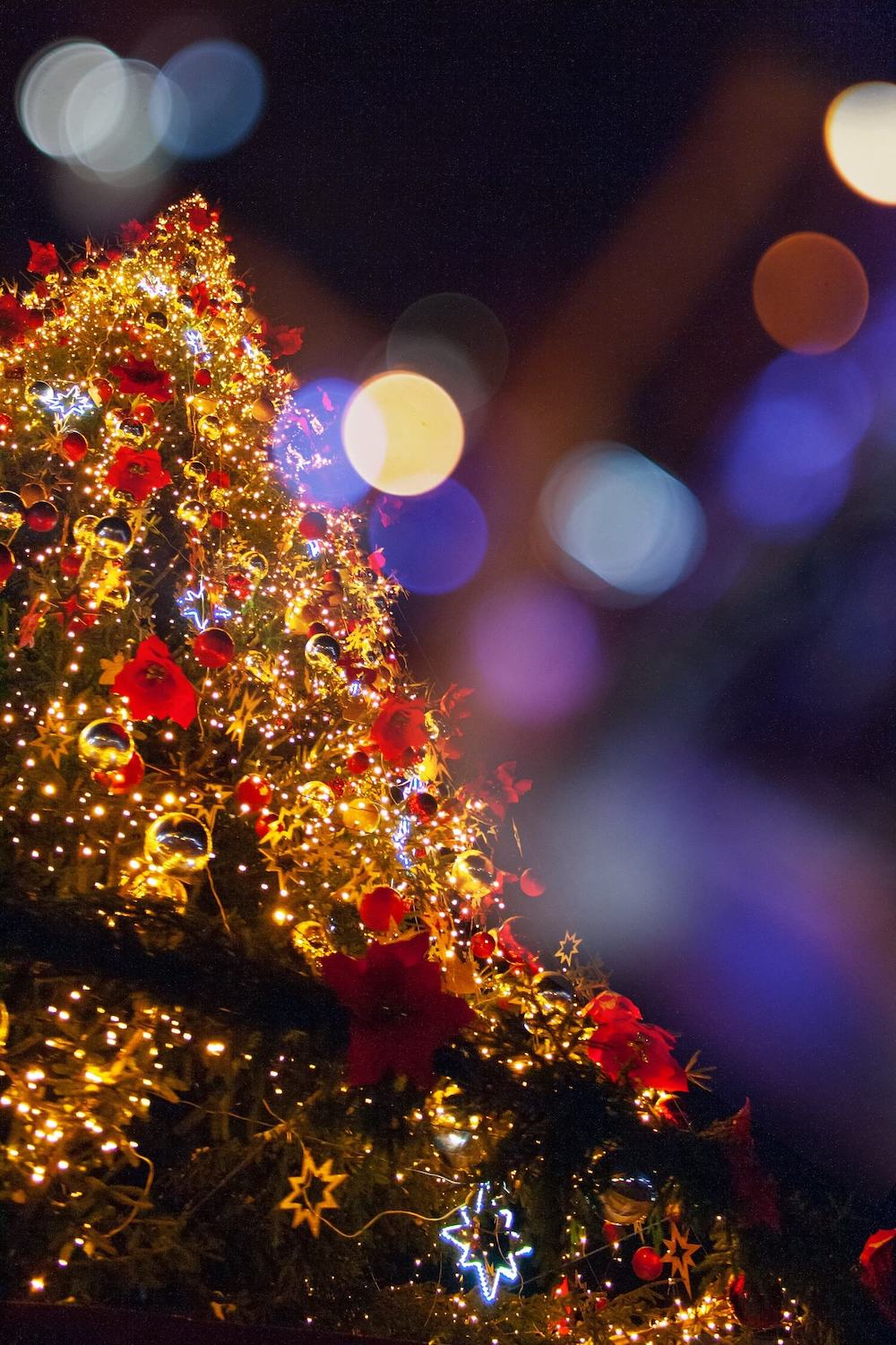 Photo of a lit up Christmas Tree