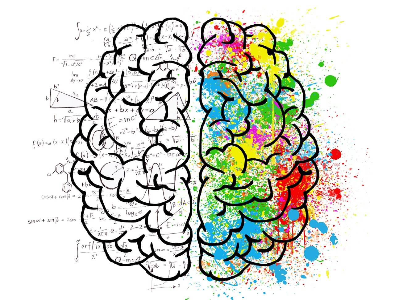 left and right brained