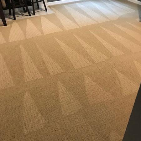 Eco Friendly Carpet Cleaning Lynnwood Wa