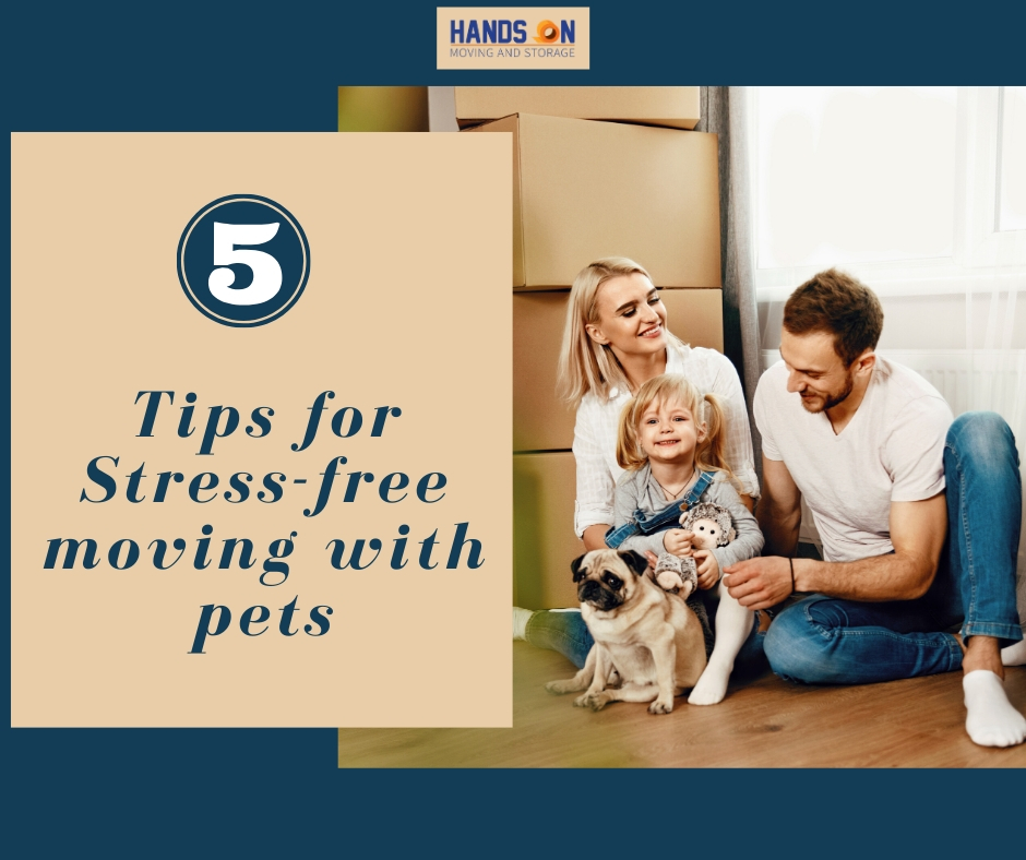 Five tips for stress-free moving with pets.