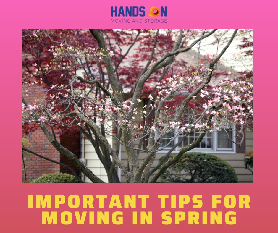 Important tips for moving in spring