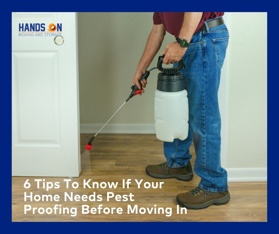 6 Tips To Know If Your Home Needs Pest Proofing Before Moving In