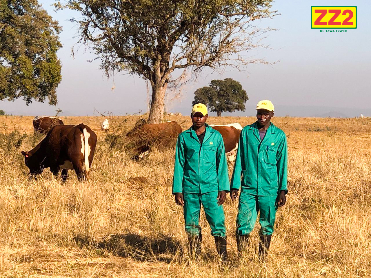 Training of ZZ2 Cattle Handlers and Herdsmen