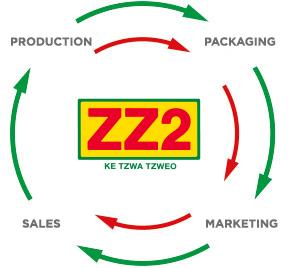Strategic Management  Cycle