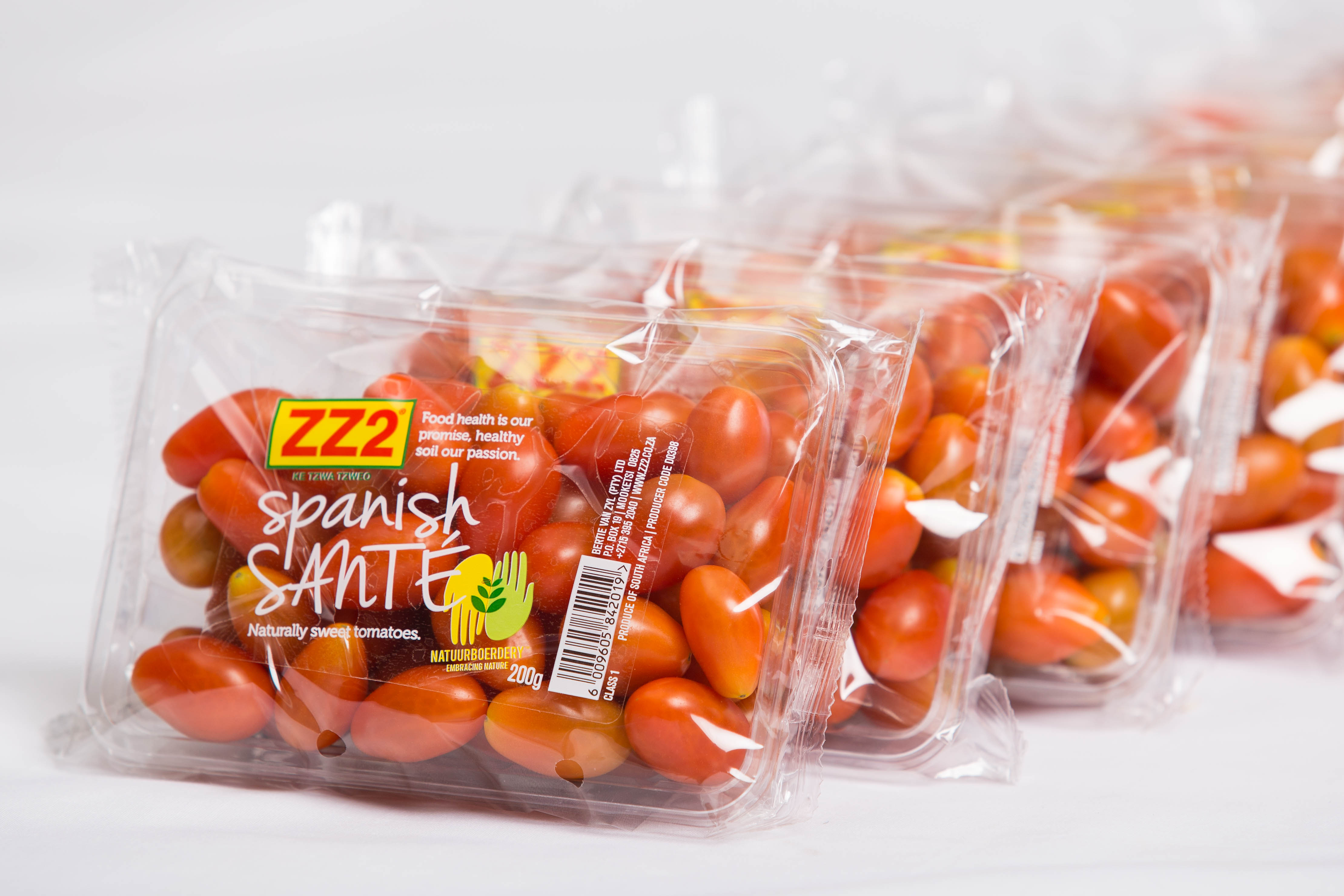 ZZ2 Spanish Sante Tomatoes