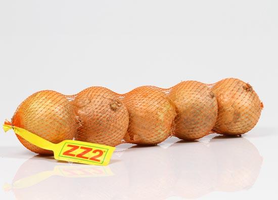 ZZ2 Brown Onions