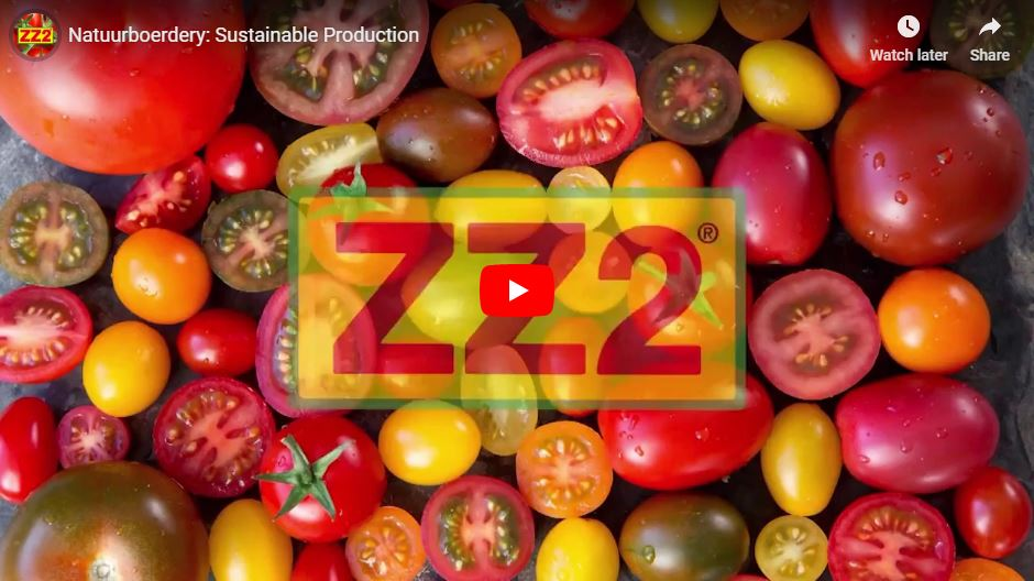 Sustainable Production video