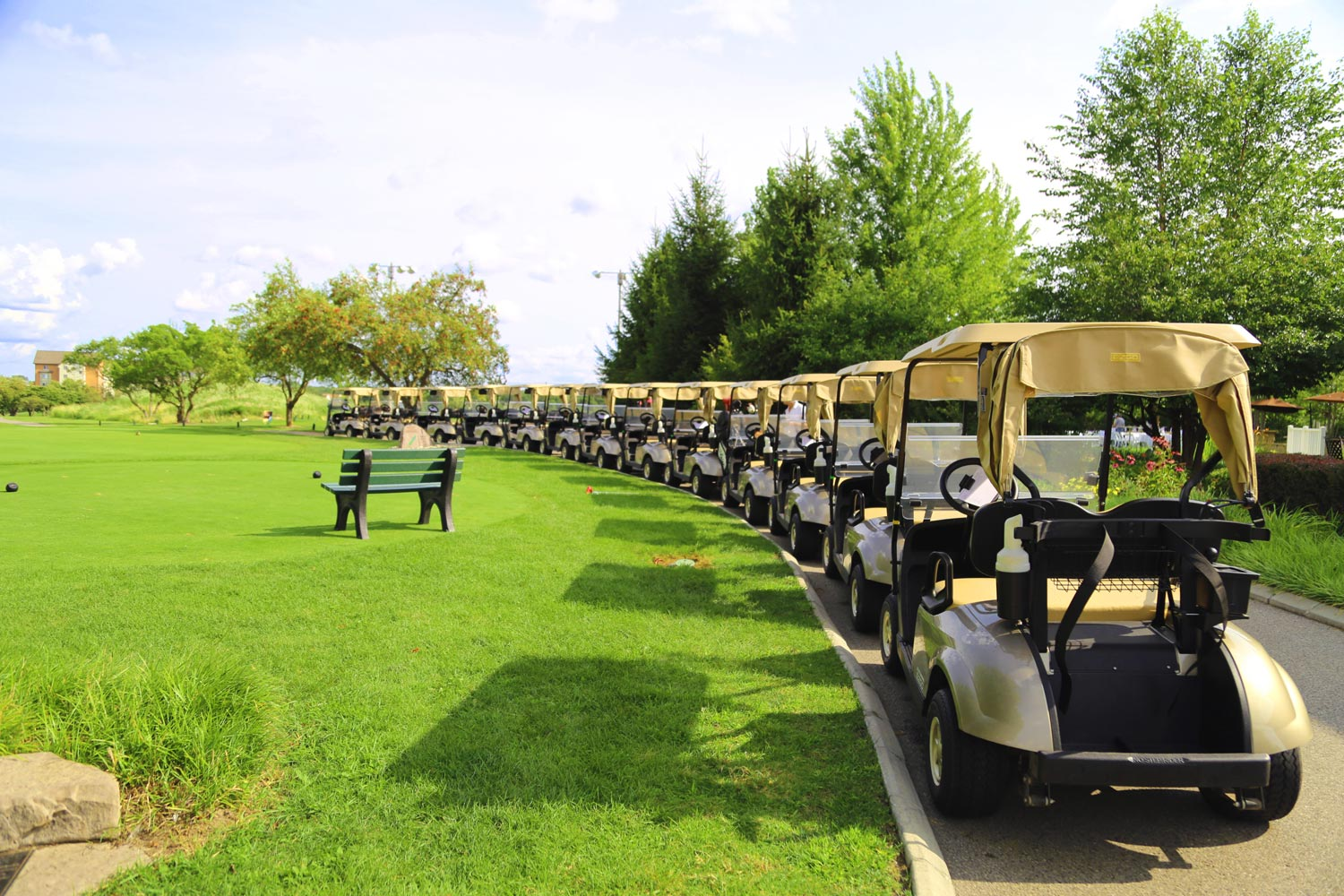 a row of golf carts