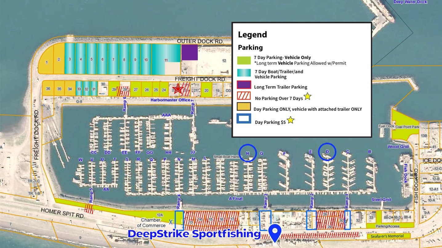 homer harbor parking map for deepstrike sportfishing