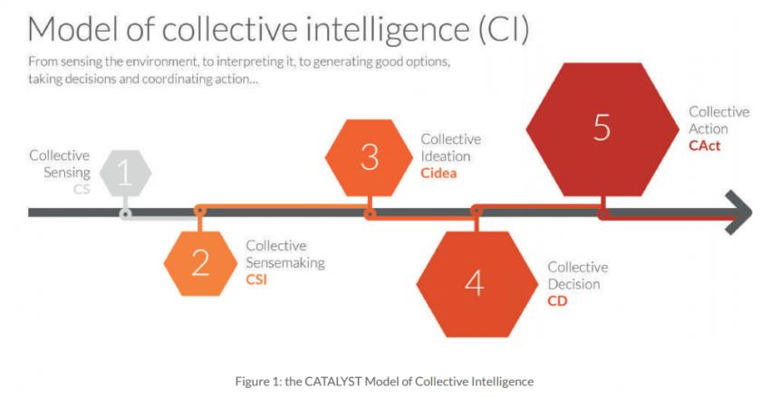 Figure 2 - Modèle de l'intelligence collective
