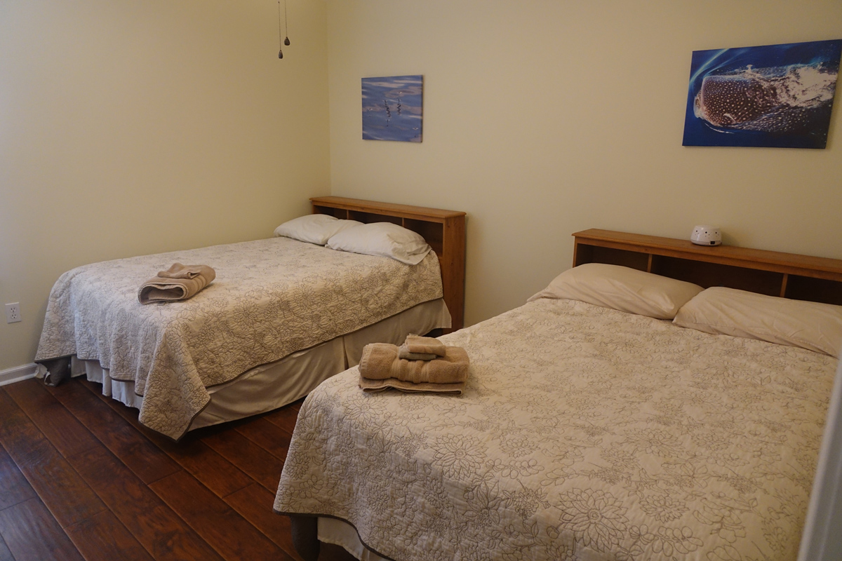 Image of bedroom with two double beds.