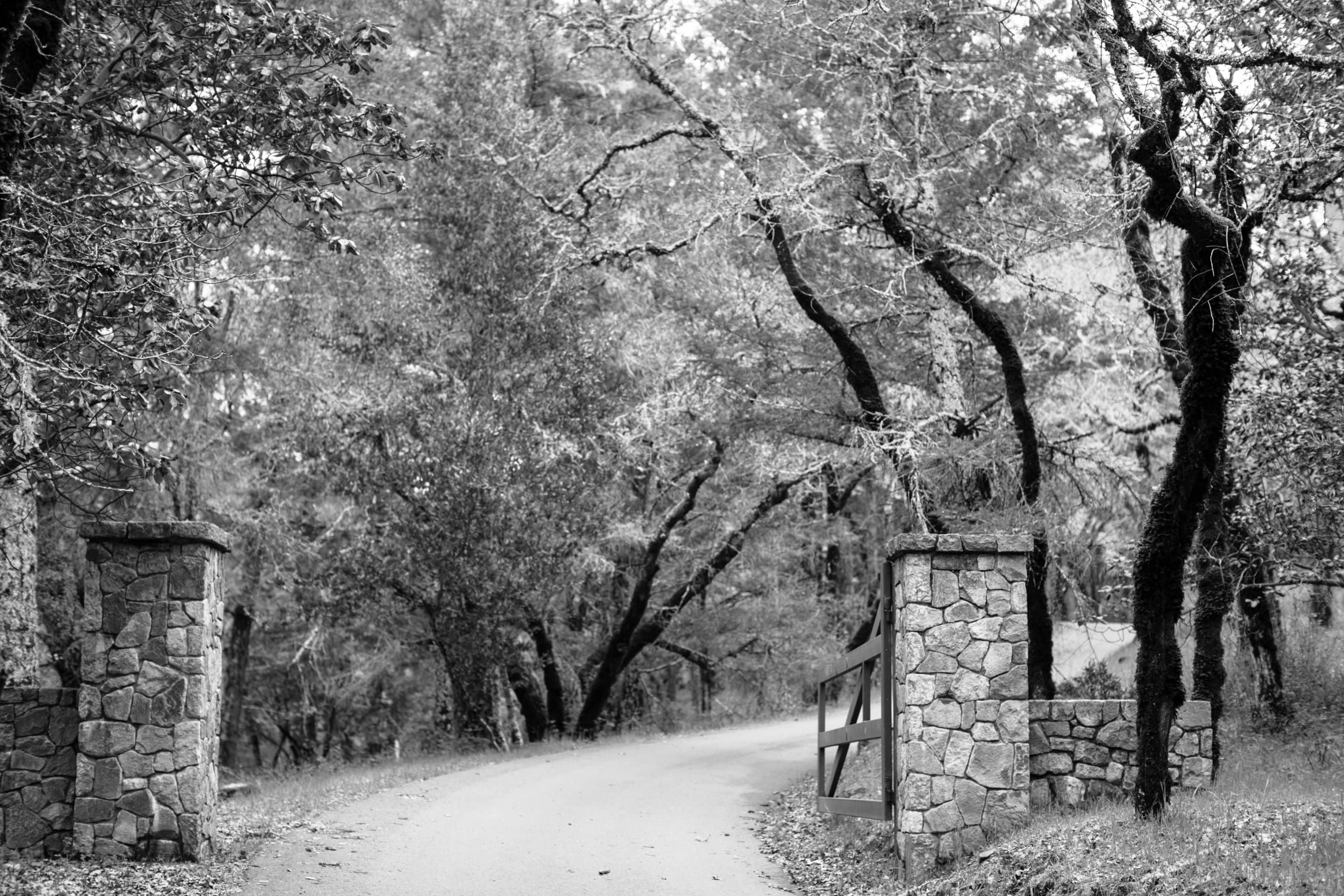 Stone gate at our Mayacamas Mountain Estate