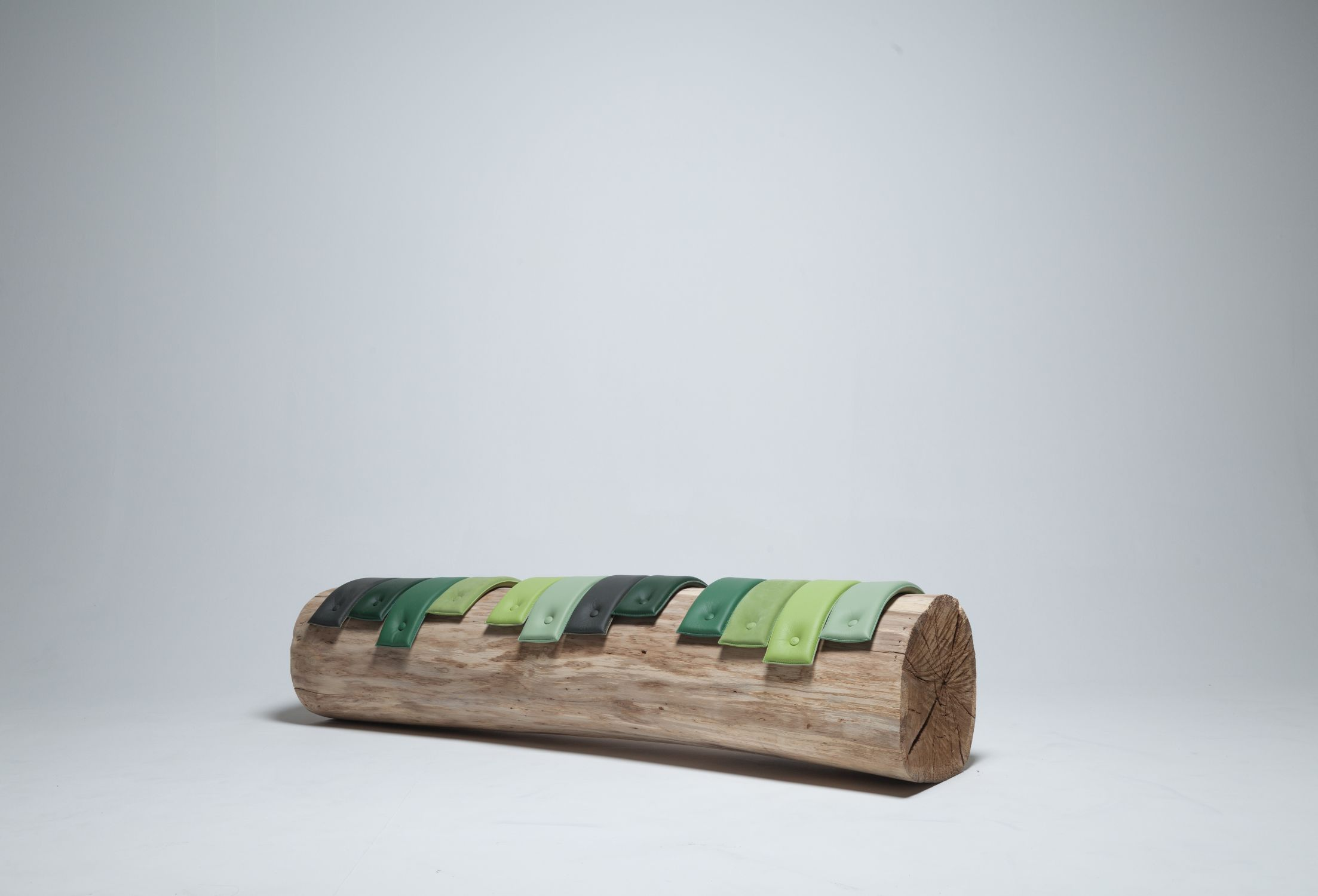 Transformations Tree Trunk Benches