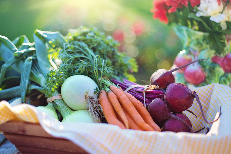 Bosman Healthy Nutrition